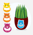 collection of colorful cats stickers with a flower vector image