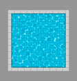 creative of swimming pool top vector image