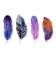 hand drawn watercolour bird feathers vibrant boho vector image vector image