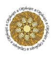 oktoberfest card mandala with hop floral vector image