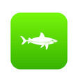 shark fish icon digital green vector image vector image