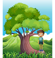 a boy standing on a root a tree vector image vector image