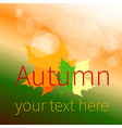 Autumn text vector image