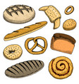bread and pastry donut long loaf baguette and vector image vector image