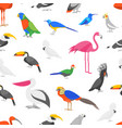 cartoon color exotic bird seamless pattern vector image vector image