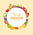 different kinds of fruits background vector image