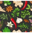 hot pattern with herbs on dark vector image vector image