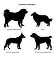 dog breed silhouette pet icon set sheped dog vector image