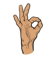 Fingers are doing OK symbol vector image
