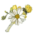 boutonniere with white chrysanthemum vector image vector image