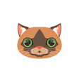 cute brown cat head with green eye funny cartoon vector image vector image