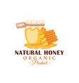glass pot with honey honeycomb with drips honey vector image vector image