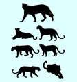 panthers and leopards silhouette vector image vector image