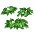 summer composition with exotic leaves vector image vector image