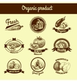 Vegetables sketch banner set vector image