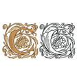 vintage initial letter c with baroque decoration vector image