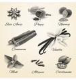 Spices set black and white vector image vector image