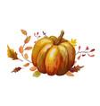 watercolor design autumn leaf pumpkin vector image