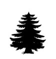 black silhouette of pine tree icon isolated on vector image vector image