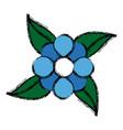 blue flower natural leaves decoration vector image