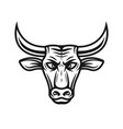 bull head in vintage style vector image vector image