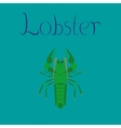 flat on background seafood lobster vector image