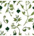 garden floral seamless pattern spring vector image vector image