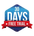 Thirty days free trial vector image vector image