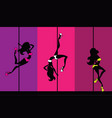 exotic pole dance vector image
