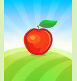 banner template with apple fruit in garden vector image
