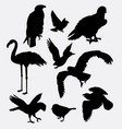 bird animal collection silhouette vector image