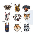 dog trend labels 2018 year of the dog vector image vector image