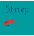 flat on background sea shrimp vector image