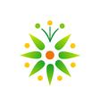 green leaf bio star logo vector image vector image