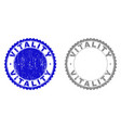 grunge vitality textured stamp seals vector image vector image