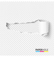 half blank torn paper pieces scroll vector image vector image