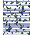 seamless pattern of blueberry branches berries vector image