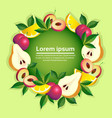 tropical fruits colorful circle organic over green vector image