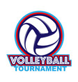 volleyball blue and orange vector image vector image