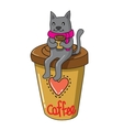 cat with coffee vector image