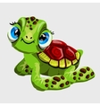 Cute green turtle with large blue eyes vector image vector image