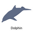 dolphin icon isometric style vector image vector image