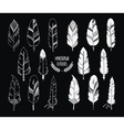 hand drawn set feathers and silhouette isolated vector image