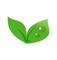 Icon plant