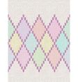 Knit Woolen Baby Ornament Texture vector image vector image
