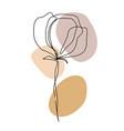 minimal card floral art design one line flower vector image vector image