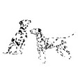 a collection sketches breed dogs isolated hand vector image