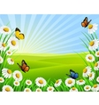beautiful nature vector image vector image