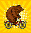 circus bear on bicycle pop art vector image