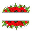decoration element with poppies and place for text vector image vector image